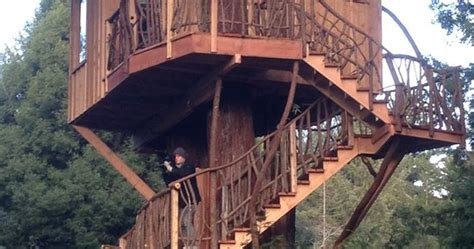 Look At This Treehouse | Lost Coast Outpost | Humboldt County