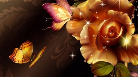 Golden Rose - Flowers & Nature Background Wallpapers on