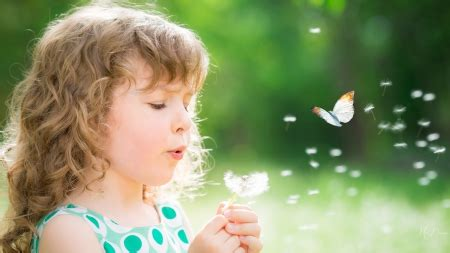 Blowing Dandelions - Flowers & Nature Background