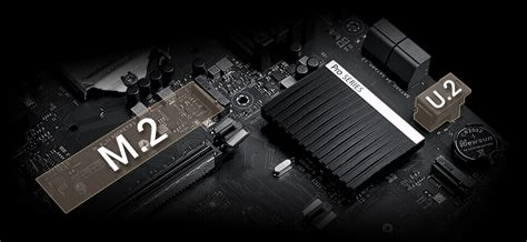 Pro WS C246-ACE | Motherboards | ASUS USA
